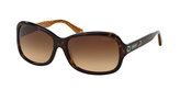 Coach HC8016 Glasses Pearle Vision