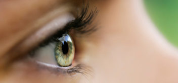 vision 101 - common eye health issues